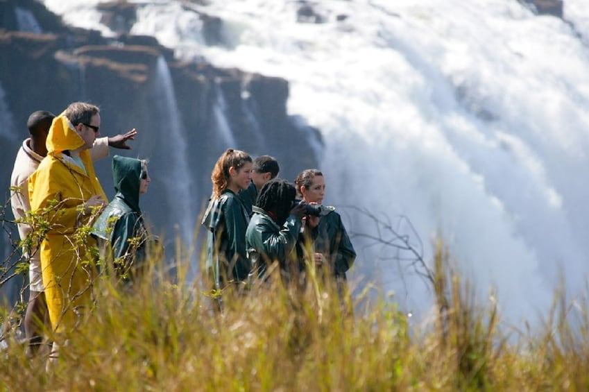Show item 3 of 5. Victoria Falls Full Day Experience