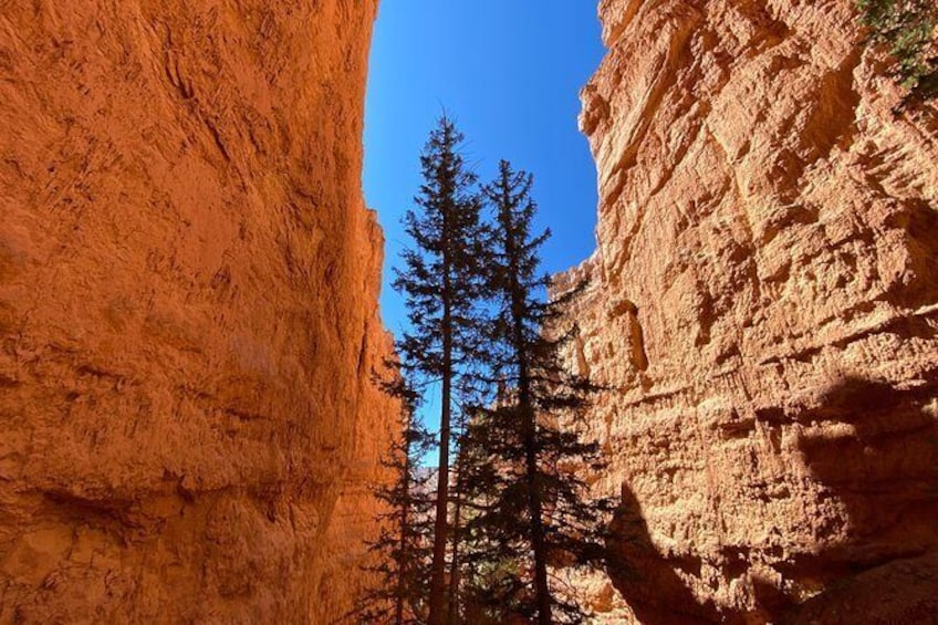 Show item 2 of 9. Private Day Tour: Bryce Canyon National Park