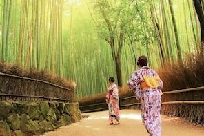 Kyoto Arashiyama & Sagano Bamboo Private Tour with Nationally-Licensed Guid...