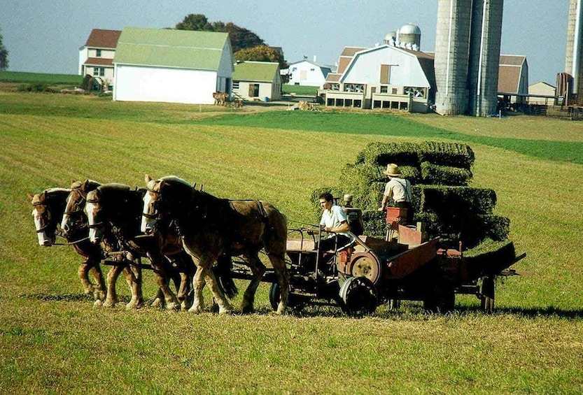 Show item 3 of 5. New York to Amish Country Private Day Trip