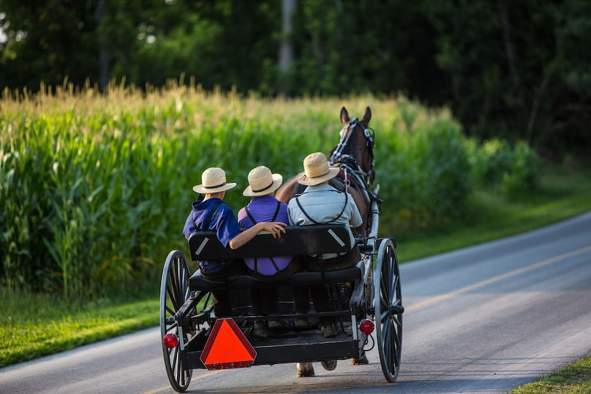Show item 2 of 5. New York to Amish Country Private Day Trip