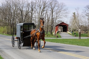 New York to Amish Country Private Day Trip