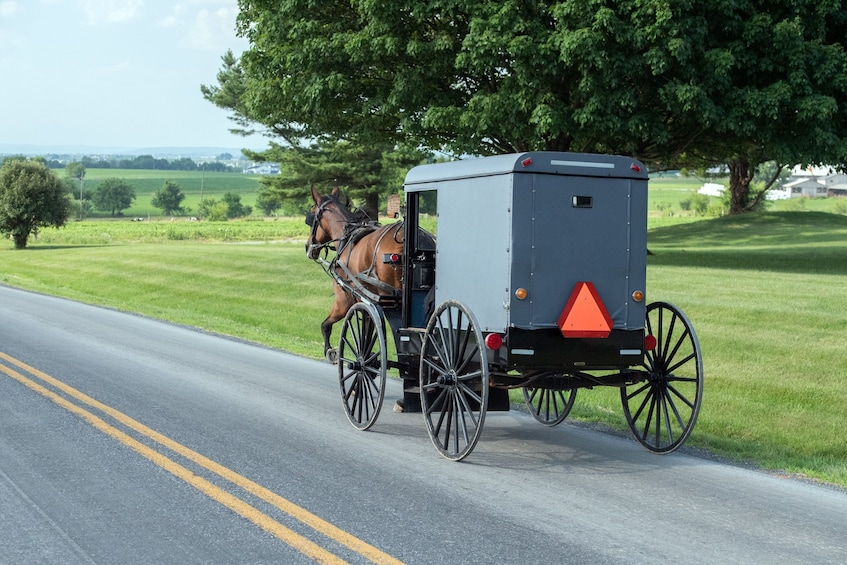 Show item 5 of 5. New York to Amish Country Private Day Trip