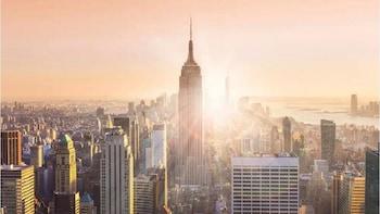 1-Day New York Tour
