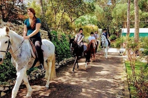 Horse Riding with Wine Tasting
