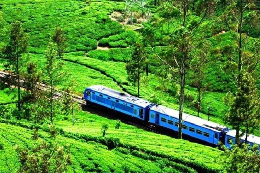 Ohiya - Haputale / Bandarawela / Ella / Badulla train ride