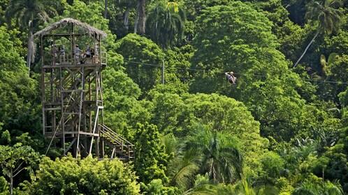 Wooden tower deck for zip lining in La Romana
