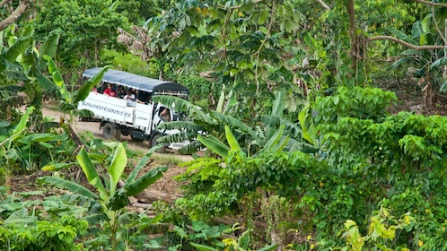 Passenger carrier going through the jungle in La Romana