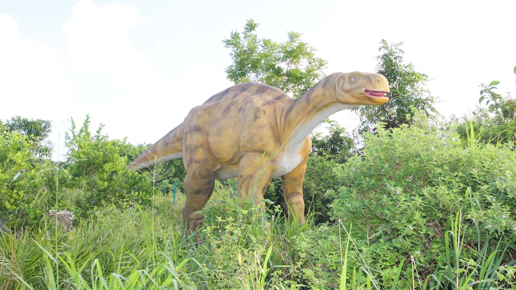 Åpne bilde 2 av 10. life size replica of dinosaur in theme park in Santo Domingo
