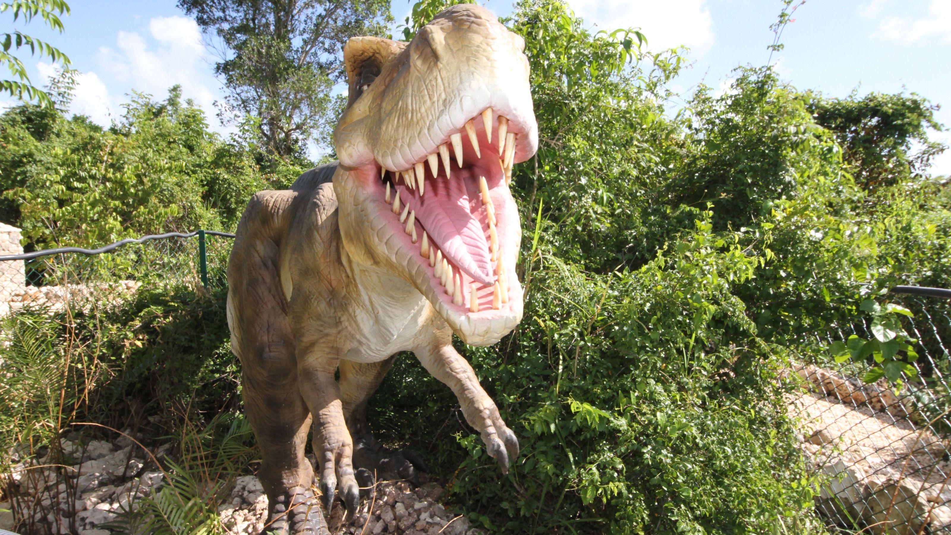 life size replica of Tyrannosaurus Rex in theme park in Santo Domingo