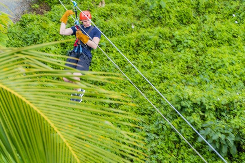Mountain Zipline Adventure with Fresh Fruits & Drinks
