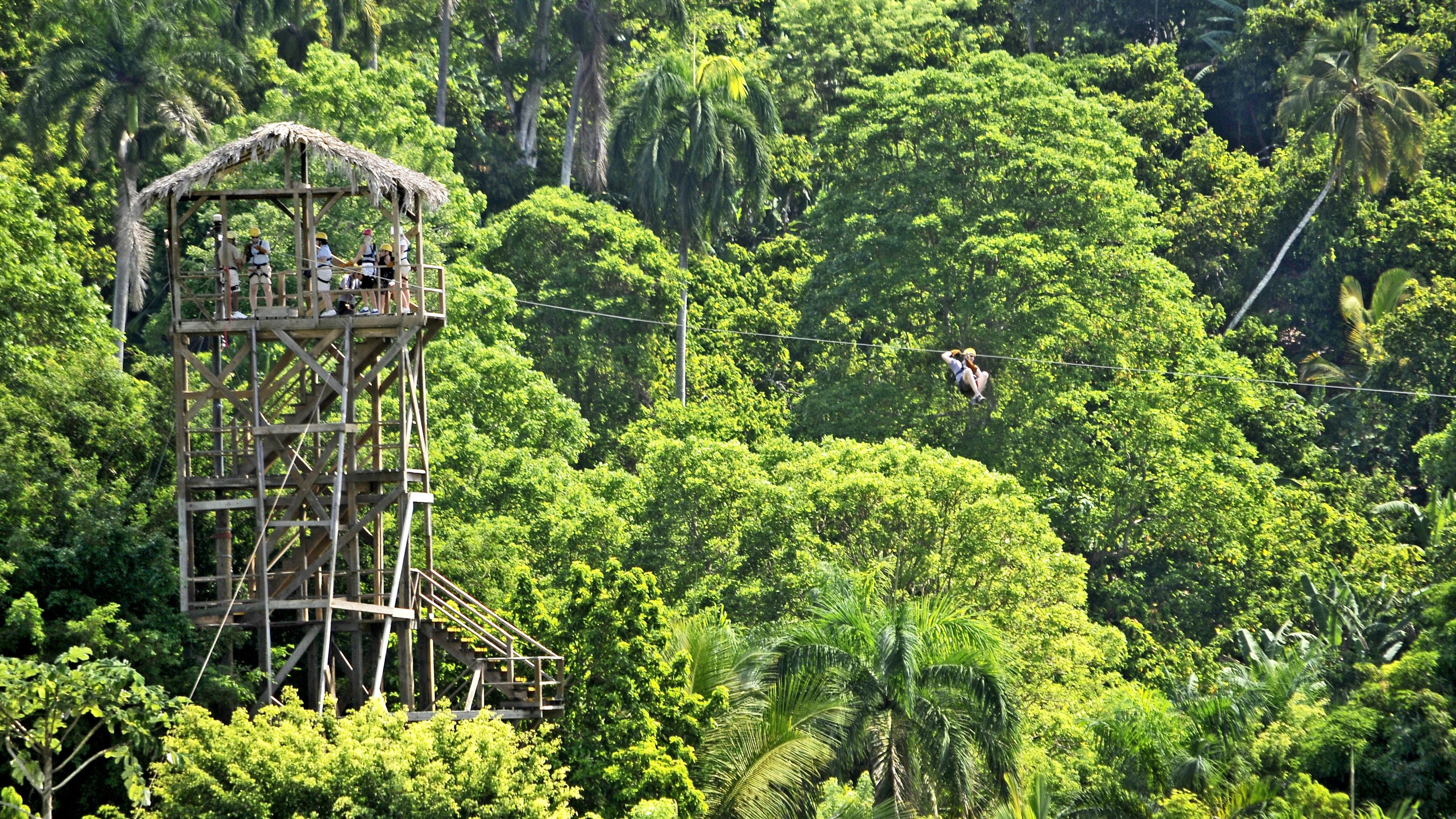 man riding zip line through forest in Santo Domingo