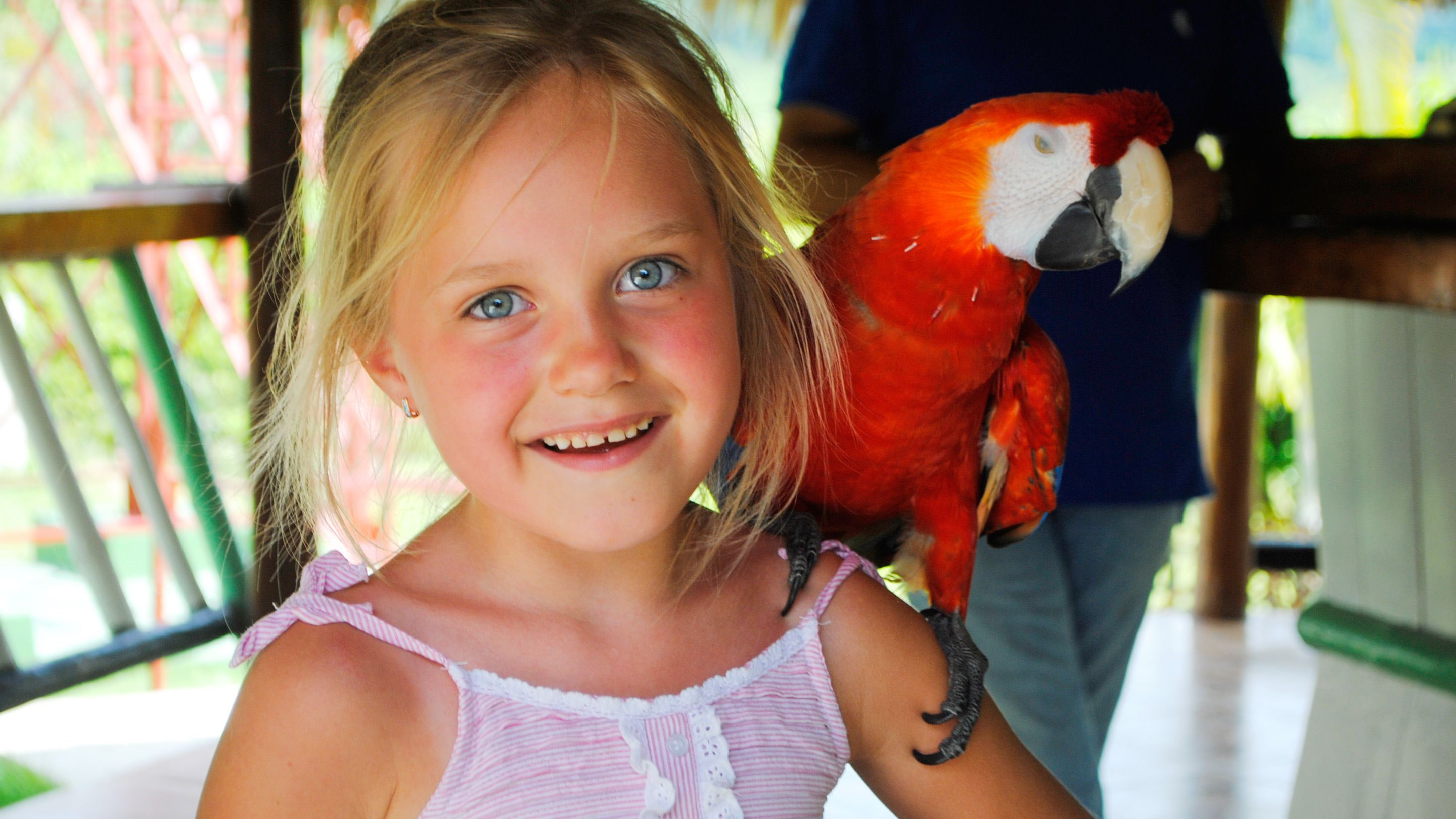 young girl with macaw parrot on her shoulder in Santo Domingo