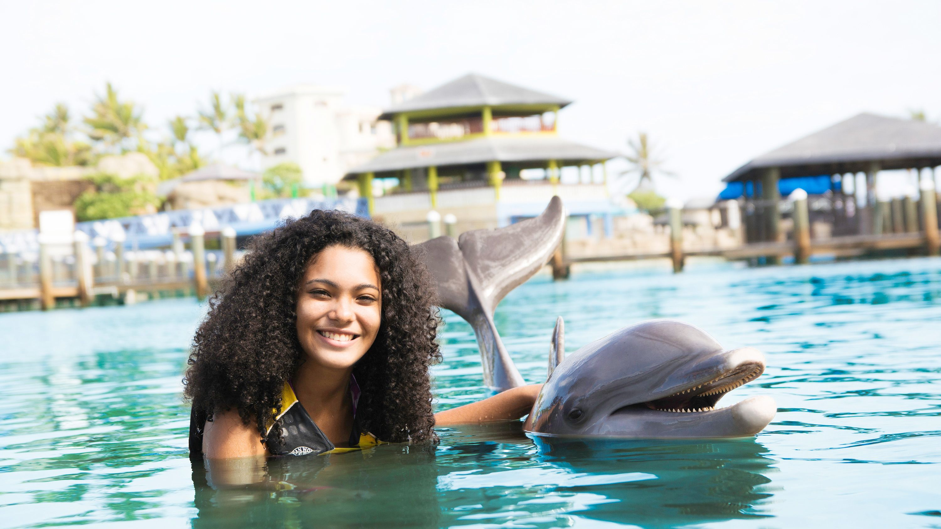 Ocean World Day Pass & Dolphin Swim