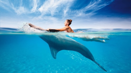 Woman swimming with a dolphin in Cancun