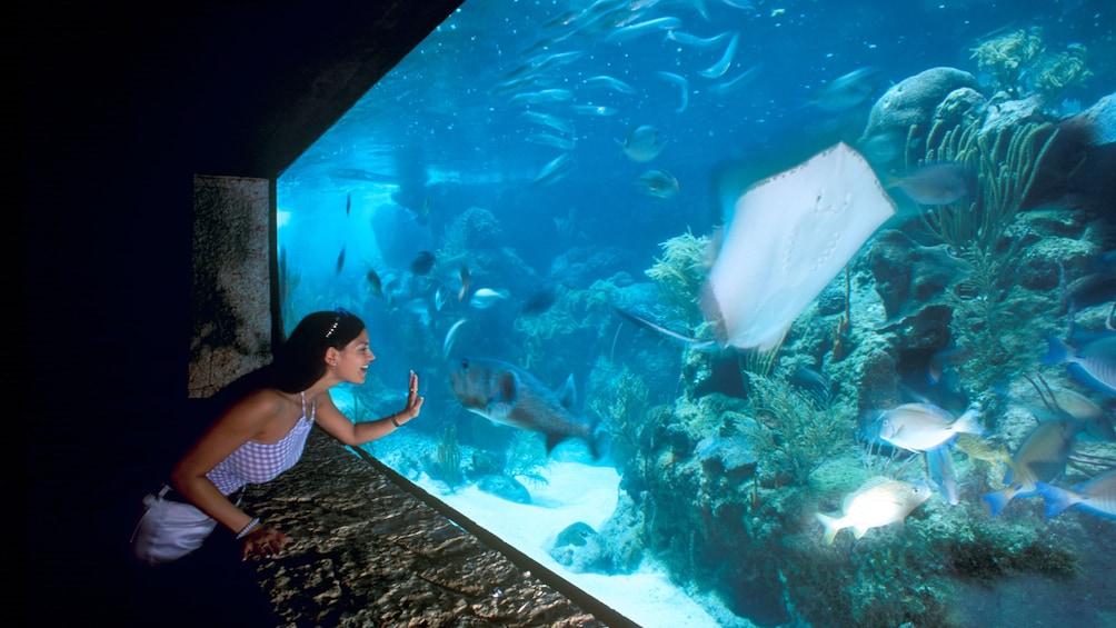 Woman looking at aquarium at Xcaret Park in Riviera Maya