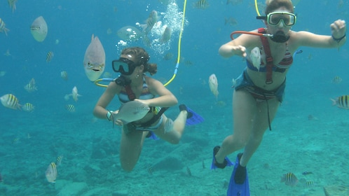 Two snuba diving women surrounded by fish in Cozumel
