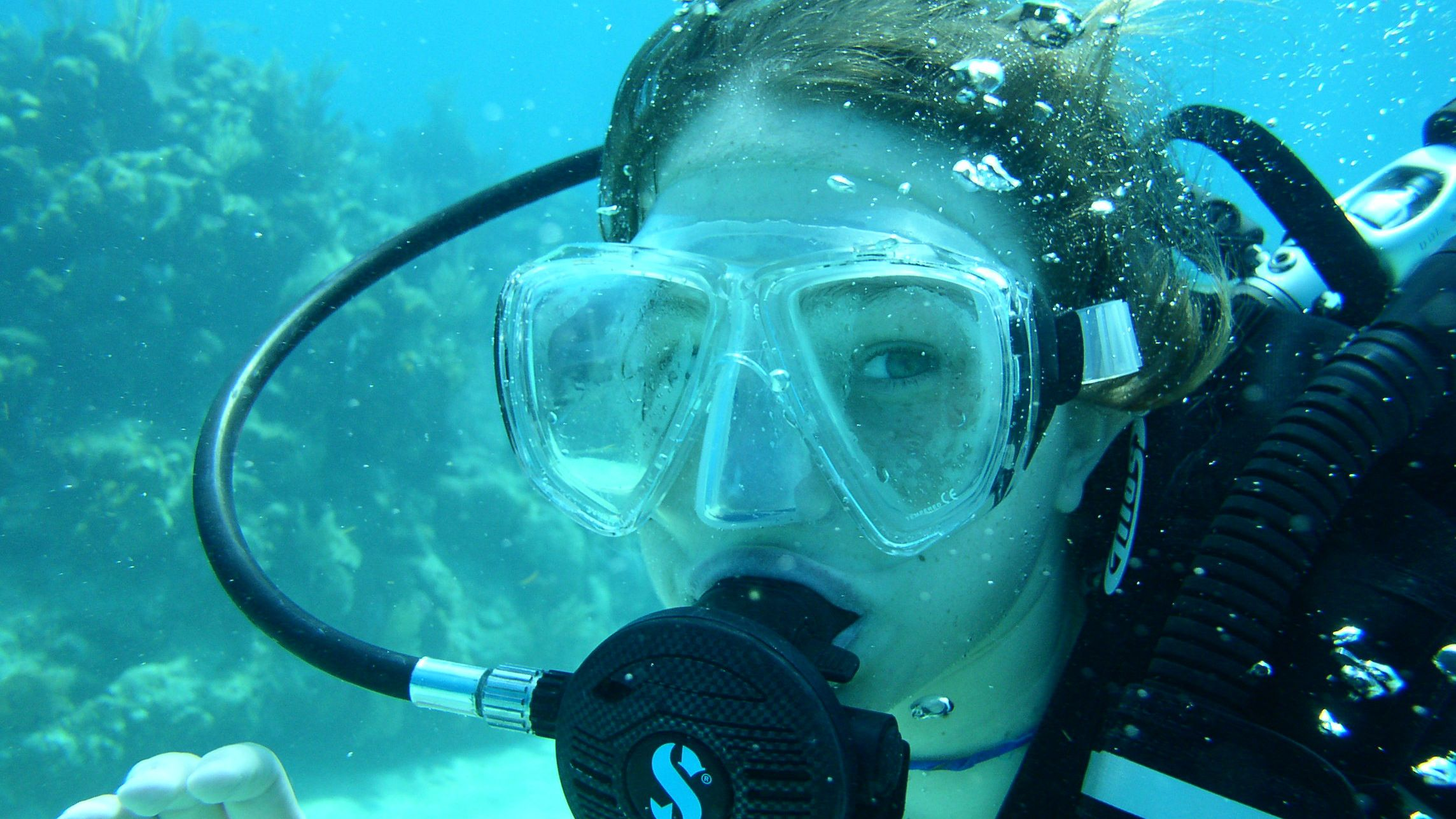 Cozumel Dive Package for Certified Divers