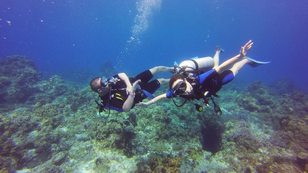Scuba diving pair in Riviera Maya