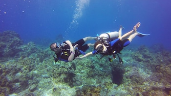 2-Tank Dive Cozumel with All-Inclusive Day Pass