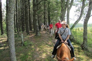 Guided Horseback Ride through Flame Azalea and Fern Forest