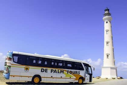 7 Sightseeing Bus Tour - California Lighthouse.jpg