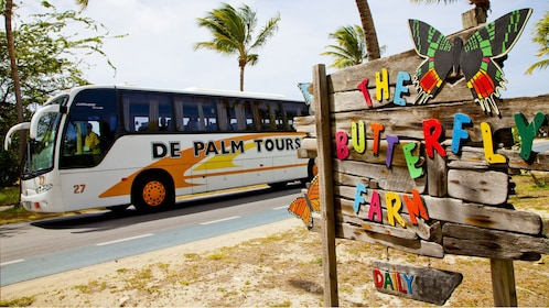 Tour bus passes by The Butterfly Farm sign in Aruba