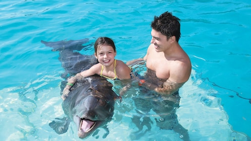 Father and daughter play with a bottlenose dolphin near Puerto Vallarta