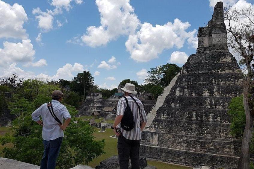 Guatemala Birding Tour at Tikal and Uaxactún National Park