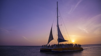 Palm Pleasure Sunset Cruise with Open Bar & Snacks