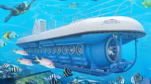 Submarine with fish in Aruba