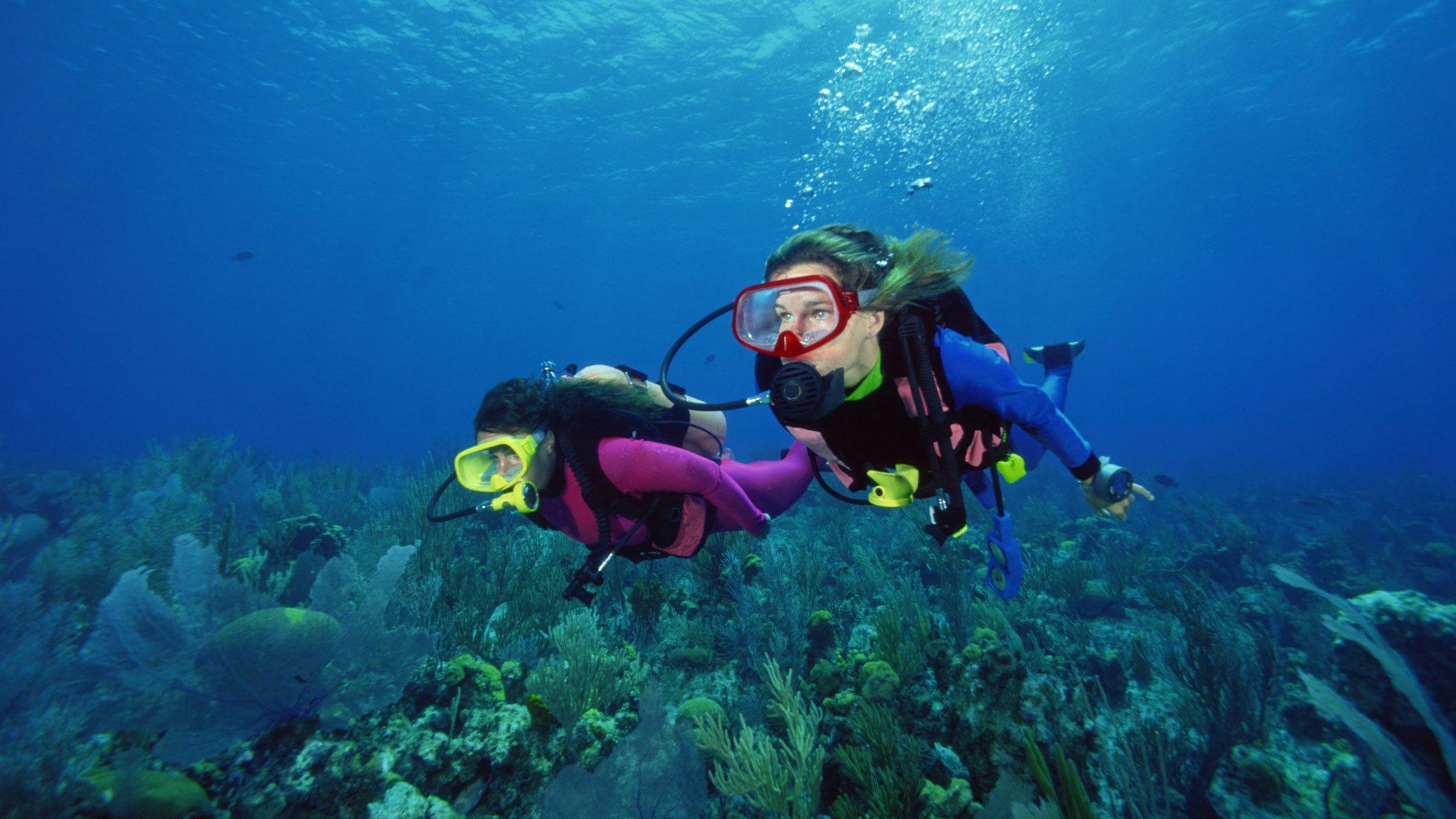 Pair of scuba divers near sea floor