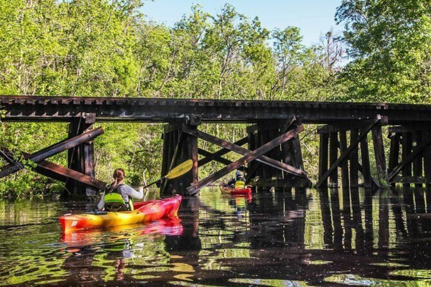 Show item 3 of 9. Lofton Creek Guided Kayak Tour - Amelia Island