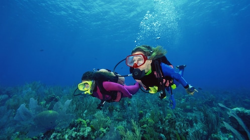 2 people scuba diving in Bahamas