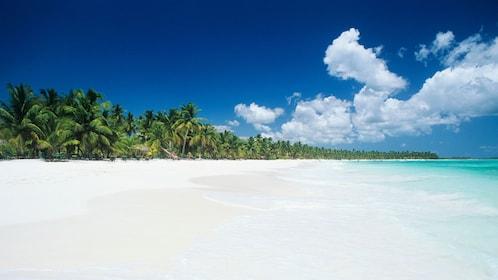 White sandy beach in Bahamas
