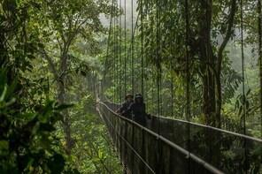 Arenal Selfguide: Mistico Hanging Bridges, La Fortuna Waterfall & Volcano P...