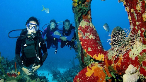 Scuba diving group in the bahamas