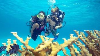 Discover Scuba Lesson & Dive in Bahamas