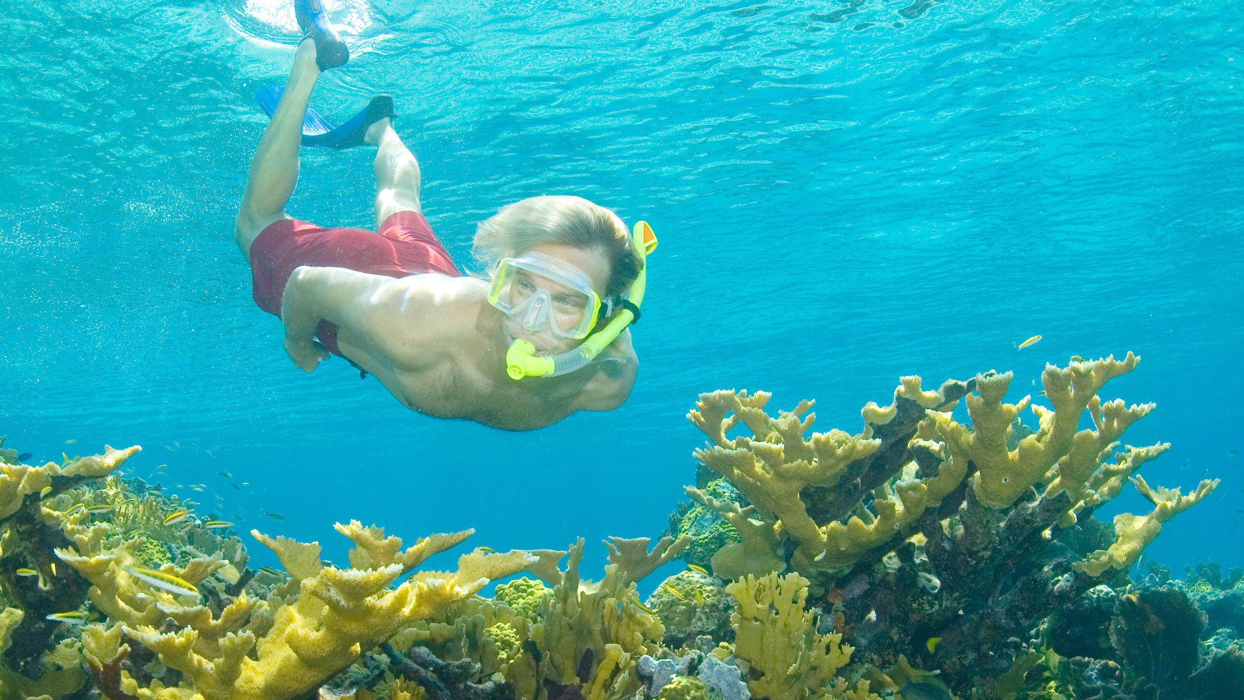 Snorkeler in water in bahamas