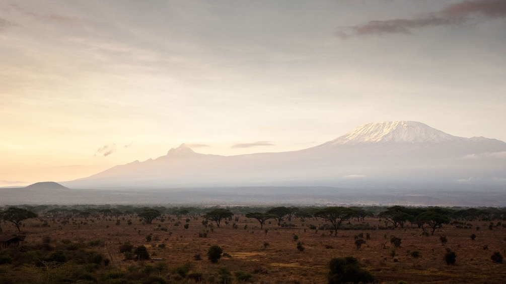 Sprawling field at Mount Kilimanjaro National Park with the mountain rising in the distance in Tanzania