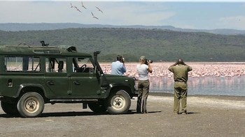 Lake Nakuru National Park Full-Day Tour