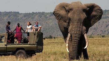 7-Day Maasai Footsteps Safari