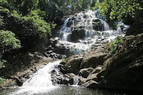 UDZUNGWA NATIONAL PARK AND WATERFALLS - 3 Days