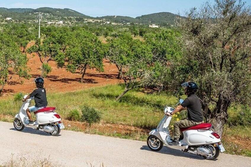 Vespa guided Tour Ibiza