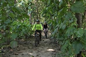 Jungle Mountain Bike Tour