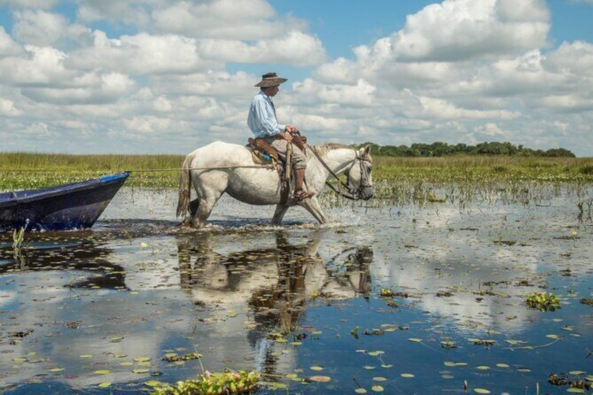 Show item 1 of 8. Tradition, culture and nature in Ibera Marshlands