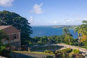 Tobago Island Tour