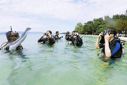 Discover Scuba Diving - Experience 2 Reef Dives In Kota Kinabalu Marine Park