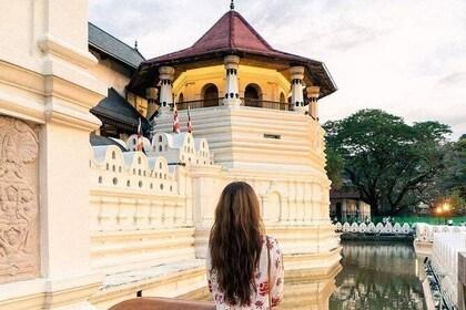 Explore Kandy360