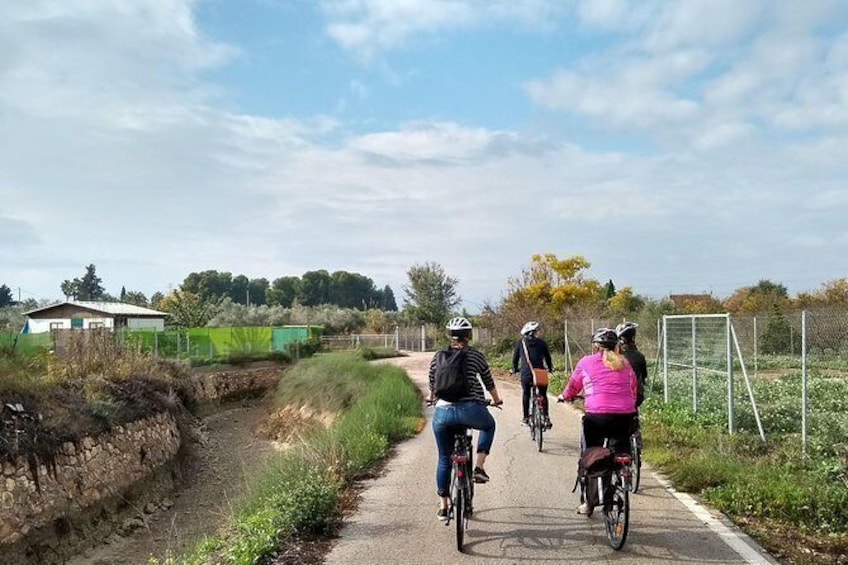 Show item 5 of 7. Cycling along the Aljufia main canal.